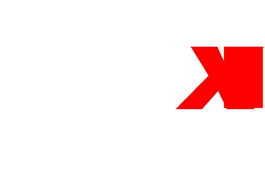 MAX SRL